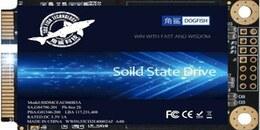 Dogfish+mSATA+SSD